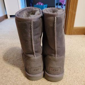 Gray short ugg boots